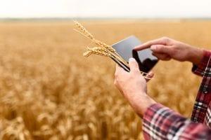 conectarse a internet en zonas rurales